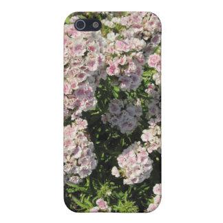 piel del iPhone 4: Floral del rosa y blanco iPhone 5 Carcasa
