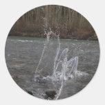 Piel del regulador de la danza del agua pegatinas redondas