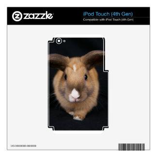 Piel del tacto 4 de iPod del conejo de conejito de iPod Touch 4G Skin