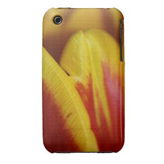 Piel del tulipán iPhone 3 Case-Mate funda