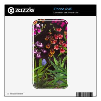 Piel equitante de Zazzle de las orquídeas de Calcomanías Para iPhone 4S
