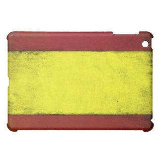 Piel fresca del iPad con la bandera sucia del vint