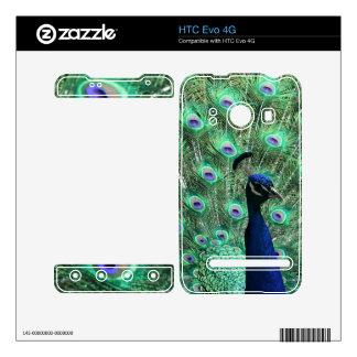 Piel magnífica de HTC Evo 4G del pavo real HTC Evo 4G Calcomanías