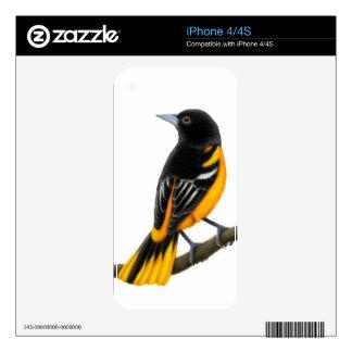 Piel masculina de Baltimore Oriole Zazzle Skin Para El iPhone 4