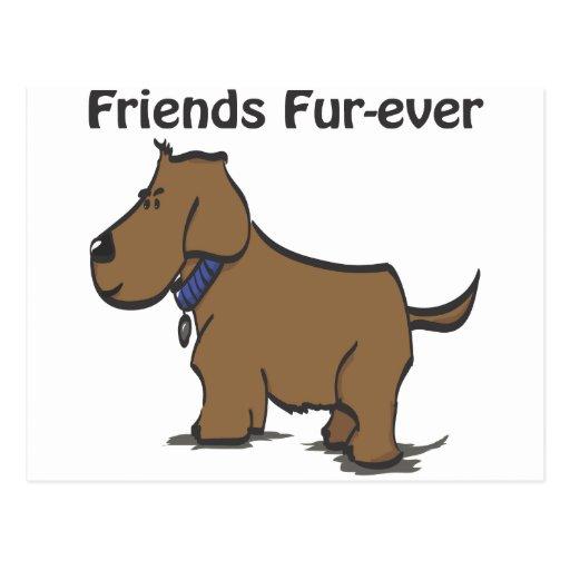 ¡Piel-nunca de los amigos! Tarjeta Postal