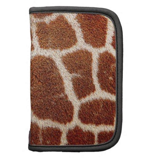 Piel original de la jirafa organizadores
