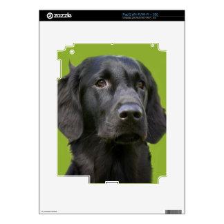 Piel revestida plana negra del ipad 2 del perro skins para iPad 2