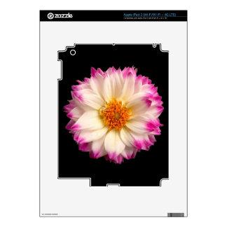 Piel rosada blanca del iPad 3 del negro de la flor Pegatina Skin Para iPad 3