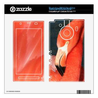 Piel rosada de Toshiba REGZA IS04 del flamenco Calcomanía Para Toshiba REGZA