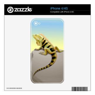 Piel verde de Zazzle de la iguana que toma el sol Skins Para eliPhone 4S