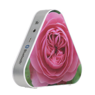 Pieladium Speaker Roses Macro
