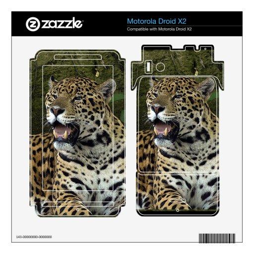 Pieles salvajes de la electrónica del Animal-Amant Motorola Droid X2 Calcomanías