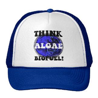 Piense el combustible biológico de las algas gorras