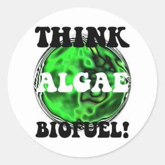 ¡Piense el combustible biológico de las algas! Pegatina Redonda