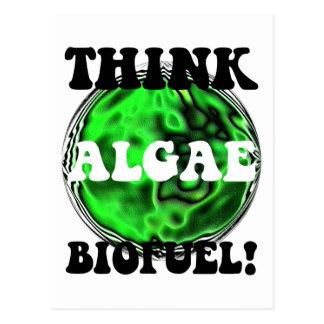 ¡Piense el combustible biológico de las algas! Tarjeta Postal
