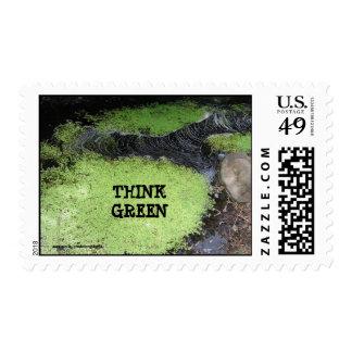 Piense el sello verde de la charca
