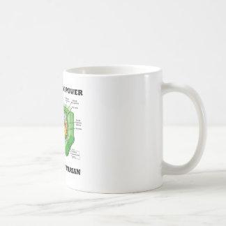 Piense que el poder verde piensa al vegetariano (c taza