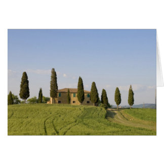 Pienza, Val d'Orcia, Siena province, Tuscany, Greeting Card