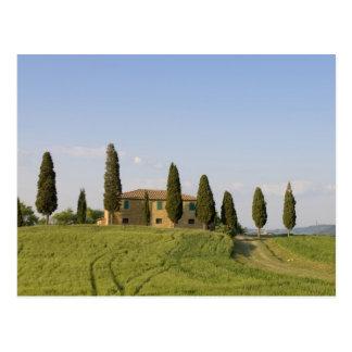 Pienza, Val d'Orcia, Siena province, Tuscany, Postcard