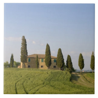 Pienza, Val d'Orcia, Siena province, Tuscany, Tile