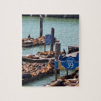 Pier39 SeaLions Puzzle