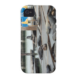 Pier 39 case for the iPhone 4