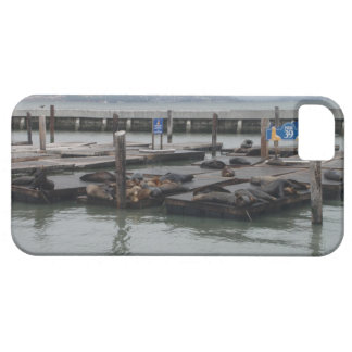 Pier 39 of San Francisco iPhone 5 Cover