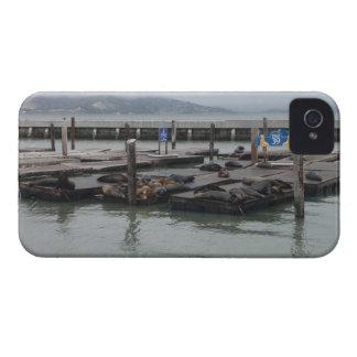Pier 39 of San Francisco iPhone 4 Case