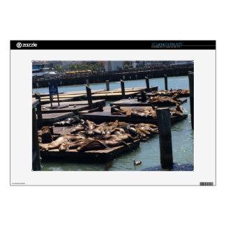 Pier 39 San Francisco California Laptop Decals
