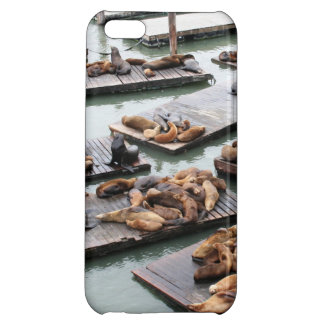 Pier 39 Sea Lions in San Francisco iPhone 5C Cover