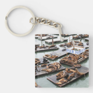 Pier 39 Sea Lions in San Francisco Square Acrylic Key Chain