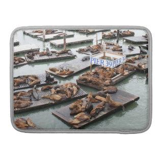 Pier 39 Sea Lions in San Francisco MacBook Pro Sleeve