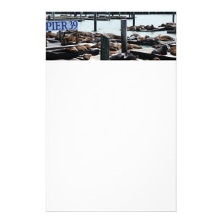Pier 39 Sea Lions in San Francisco Stationery