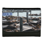 Pier 39 Sea Lions in San Francisco Wallet