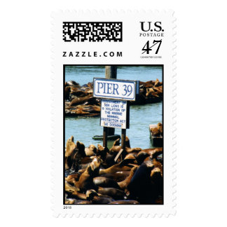 Pier 39 Sea Lions Postage