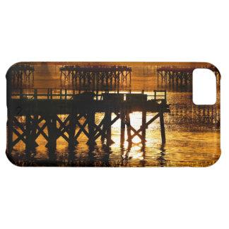 Pier Of The Pacific Northwest Docks iPhone 5C Cases