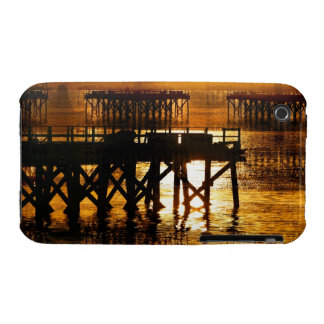 Pier Of The Pacific Northwest Docks iPhone 3 Cases
