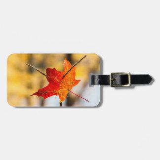 pierced in autumn bag tag