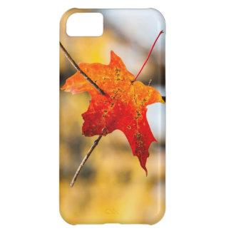 pierced in autumn iPhone 5C case