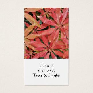 Pieris, Horticultural business card