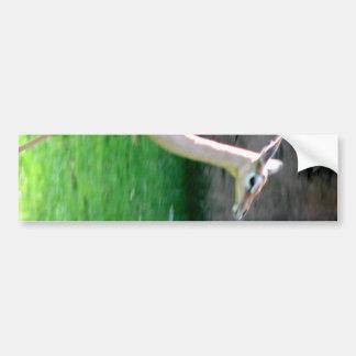 Piernas del zanco pegatina de parachoque