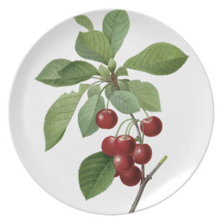 Pierre-Joseph Redouté Cherries Vintage Painting Pl Dinner Plate