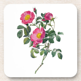 Pierre Joseph Redoute Roses Coaster
