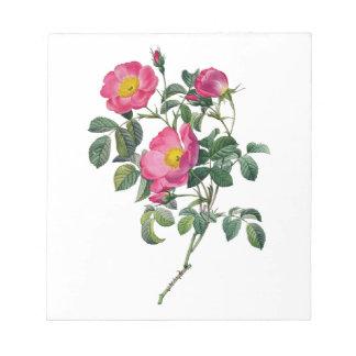Pierre Joseph Redoute Roses Notepad