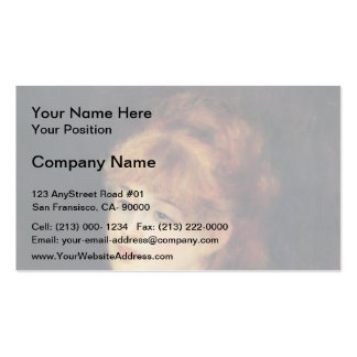390 braiding business cards and braiding business card for Hair braiding business cards