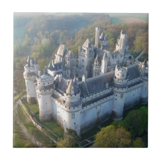 Pierrefonds Castle Tile