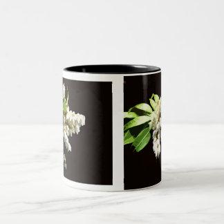Pierus Japonica (Andromeda) blossoms mug