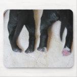 Pies del perrito alfombrilla de raton