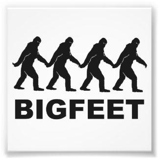 Pies grandes de Bigfoot Cojinete