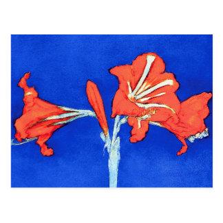 Piet Mondrian - Amaryllis Postcard
